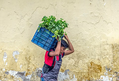 Life is rough (Pejasar) Tags: vegetables load labor backbrace texture wall rough life work laborer antigua guatemala man street candid