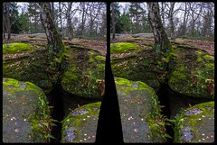Crevice 3-D / CrossView / Stereoscopy / HDRaw (Stereotron) Tags: saxony sachsen saxonswitzerland sandstone mountains nationalpark sächsischeschweiz felsenlabyrinth königstein moos europe germany deutschland crosseye crossview xview pair freeview sidebyside sbs kreuzblick 3d 3dphoto 3dstereo 3rddimension spatial stereo stereo3d stereophoto stereophotography stereoscopic stereoscopy stereotron threedimensional stereoview stereophotomaker stereophotograph 3dpicture 3dimage canon eos 550d chacha singlelens kitlens 1855mm tonemapping hdr hdri raw