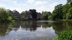 Koningslaan (Eric Böhm) Tags: spring amsterdam zuid vondelpark lente groen eend duck vijver pond bomen boom villa