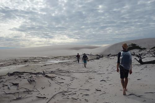 Le bois mort que vous voyez sur cette photo, c'est une ancienne partie de l'oasis. Les dunes bougent chaque année et elles avancent sur l'oasis. D'ici plusieurs centaines d'années, elle aura certainement disparu