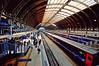 20110308 The great hall ([Ananabanana]) Tags: nikon d40 gimp photoscape 1020mm 1020 sigma sigma1020mm sigma1020mmf456exdchsmnikonfitlens sigma1020mmf456exdchsm sigma1020mmf456 nikonistas nikonista uk unitedkingdom london paddington rail railway train trains trainstation firstgreatwestern bristol westcountry somerset greatwestern