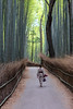 Stroll Through the Park (D Song) Tags: travel japan kyoto arashiyama bamboo forest walk historic nature asia green brown hdr vacation