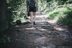 Hiking (deathtiny42) Tags: alsace france greenery hiking massifdesvosges nature racines randonnée roots verdure vosges walking