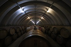 Barrells of fun (d-stop) Tags: dstop 2018 wine barrell barrells winecountry canada niagara ontario symmetry