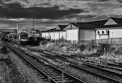 NewElginTrain (Tom McPherson) Tags: reflection river scotland sea sky street summer sun sunset travel tree trees uk urban water work harbour seascape moray tommcpherson elgin photo blackandwhite ngc inexplore mono capture camera professional blackwhite ocean train deisel locomotive station lidyl