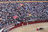 Madrid y Paco Ureña. (jesustg26) Tags: toro bull ventas madrid plaza spain españa ureña paco fiesta canon igerspain animal monumento ladrillo edificio bandera torero san isidro