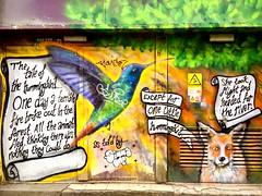 The tale of the hummingbird... (Jason Khoo Photography) Tags: artwork eastsussex sussex fox bird streetartistry dof streetartist england uk brighton sinnaone story tale hummingbirdbird spraypaintart spraycanart wallart urbanart mural unlimitedphotos color colour mobilepics iphoneshots iphone6 iphonegraphy iphone art graffiti amateurphotography outdoorphotography streetpics streetphotography streetart