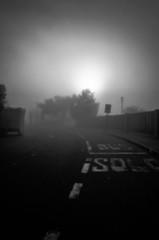_MG_0336 (Mario González V.) Tags: blackandwhite blancoynegro monochrome fog niebla sun talca chile rebelt3 canon streetphotography