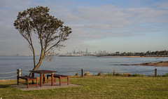 Green Point, Brighton, Australia (Paul Cook59) Tags: sea ocean melbourne water cityscape bathing boxes picnic table victoria