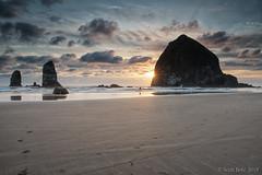 Lone Photographer - HF2 (Scott of SWPA) Tags: cannonbeach oregon westcoast pacificocean scottbetz nik singhray nikon d810 sigma 2435mm haystackrock wwwhallmarkinnscom beach sand rock portland
