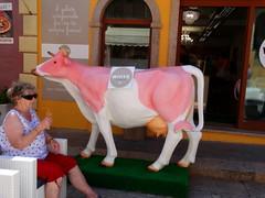 Dal produttore al consumatore:-)))!! (antonè) Tags: mucca gelateria gelato estate santateresadigallura sardegna vacanze caldo icecream cow vache vaca