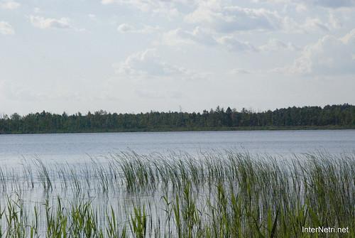 Шацький Національний Природний Парк Озеро Луки Перемут InterNetri  Ukraine 05