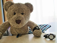 Go on, arsk me wot time it is! 43/51 (pefkosmad) Tags: tedricstudmuffin teddy ted bear holiday holibobs animal cute toy cuddly soft stuffed fluffy plush pefkos pefki pefkoi rhodes rodos greece greekislands griechenland hellas stellahotel