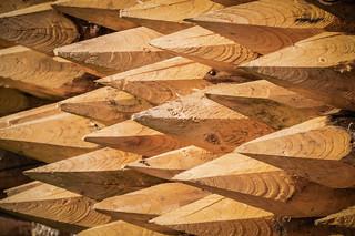 wooden poles #1