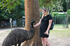 Australia_2018-22-2.jpg (emmachachere) Tags: subtropical trees hike waterfall boatride springbrook australia rainforest kanagroo animals koala brisbane boat lonepinekoalasanctuary