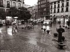 013249 - Madrid (M.Peinado) Tags: fuente lluvia tormenta plazadesanmiguel comunidaddemadrid españa spain 06072017 juliode2017 2017 huaweyp9lite huawey ccby monocromático blancoynegro byn blackandwhite bw madrid