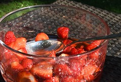 Halftime! (Gerlinde Hofmann) Tags: germany thuringia village bürden bowl strawberry garden halbzeit
