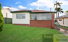 96 Cardiff Road, Elermore Vale NSW