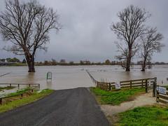 20180612_152758 Pakowhai Flooding Samyang S8 (roseyposey2009) Tags: pakowhai flooding samyang s8 clive hawkesbay newzealand nz