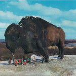 US ND Jamestown c.1960 WORLDS LARGEST BUFFALO Roadside Attraction is a 3 story high 46 foot long 60 ton Tatanka Prarie Beast built in 1959 by Elmer P. Peterson thumbnail