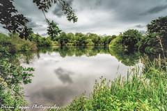 Placid Attenborough (brianfagan) Tags: 6d brianfagan beeston brianfaganphotography canal canon eos river rylands trent weirfields