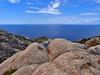 ISOLA DI MONTECRISTO 1041m (opaxir) Tags: montecristo isola island mediterranean mediterraneo toscana tuscany granito granite flickrtravelaward ncg