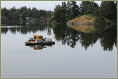Portage Inlet Boat Viewed from park path (Bill 2.7 Million views) Tags: linearpark connector portageroad portageinletpark footbridge graingerroad langford en rail trail railtrail rails2trails bicycle cycling cyclists capitalregionaldistrict crd hq headquarters parking bicyclecoalition psrk inlet portage walk hike burley gallopinggoosetrail ggt viewroyal mckenzie interchange mackenzie admirals hwy1 vancouverisland islandhighway totem pole