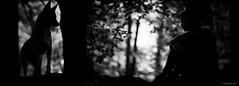 ๖ۣۜPromesse / ๖ۣۜPromise (Pilouchy) Tags: promesse monochrome wild wood arbres forest people noir blackandwhite life vie flou bokeh lumiere