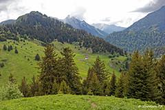 Chalets du Haut du Four - Bauges (Goodson73) Tags: didier bonfils goodson73 dgoodson bauges pointe de chaurionde 2157m parc du mouton rando montagne