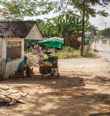 Cuba | Viñales • Little market (Cyrielle Beaubois) Tags: 2016 cuba cyriellebeaubois décembre travel explore wanderlust wander travelphotography discover pinardelrío viñales market road streetphotography street canonef50mmf14 man shadow trees