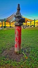 H P (akahawkeyefan) Tags: firehydrant kingsburg highschool canopy davemeyer