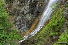 Cascade Over Granite (kevin-palmer) Tags: bridalveilfalls waterfall flowing water creek stream spearfish spearfishcanyon blackhills southdakota may spring nikond750 tamron2470mmf28 green trees circularpolarizer