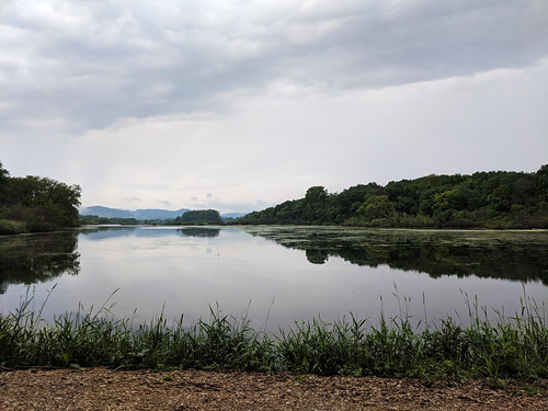 Calm Waters at Trempealeau National Wildlife Refuge