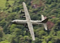 HERCULES (Dafydd RJ Phillips) Tags: c130 raf brize norton royal air force loop mach hercules