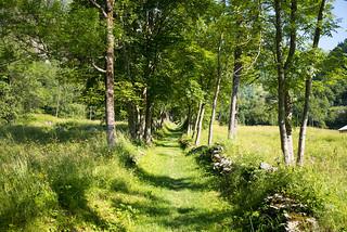 trail to Blatten/VS