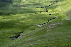 Grasslands in Tagong county, Sichuan, China (valerian.guillot) Tags: green water river scar torrent tibet tagong landscape grass grasslands china planart1450