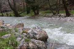 Gradac river #2 (srkirad) Tags: river rocks gradac serbia srbija valjevo travel hiking trekking excursion cloudy spring trees houses grass stones fast nature outdoor