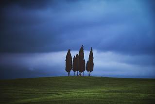 Tuscany - Cypress Hill