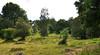 Swedish summer landscape (DameBoudicca) Tags: sweden sverige schweden suecia suède svezia スウェーデン hjälmseryd småland summer sommar sommer été verano estate 夏 なつ