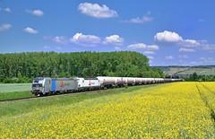 Railpool/VTG Rail Logistics 193 828 + 193 815 Himmelstadt (tobias.unsin) Tags: railway rail railroad zug güterzug germany train locomotive lok logistik landschaft bahn bavaria bayern maintal