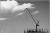 in progress (NadzNidzPhotography) Tags: nadznidzphotography blackandwhite blackandwhitephotography bw bwphotography sky crane progress growth