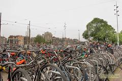 _MG_1337 (antocalv) Tags: amsterdam bici olanda bike canal