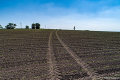 Down on the farm, tracks (Steve Samosa Photography) Tags: farming farmland farm crops aerialview dronecamera drone droneshot droneview bluesky rainhill