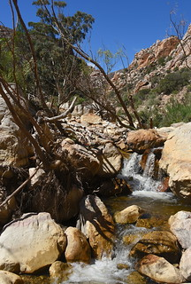 Driving up the Swartberg Pass