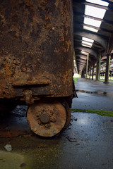 2017.08.06 Lore Photography - Central Railroad of NJ Terminal Photo Walk, Liberty State Park, NJ (Katie Wilson Photography Adventures) Tags: lorephotographycentralrailroadofnjterminalphotowalk libertystatepark nj new jersey ellis island history immigrant arrival waiting areas sandy damage piers historic city katie wilson photo adventures natural light struggle photographers learning freedom ludwig pianos area welcome melting pot reflections puddles memories ferries trains abandoned bush trainsheds rails tracks rust decay flag nyc york skyline fog black white practice exploring backyard steam train travel