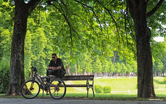 Late in the spring morning on the promenade (malioli) Tags: park bench promenade tree trees bike bicycle shadow backlight karlovac croatie europe canon