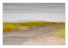 There is a road, no simple highway, between the dawn and the dark of night ... (JohnKuriyan) Tags: coyote hills regional park icm