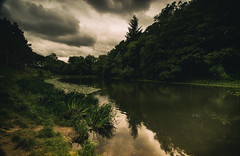 The Glen Pond (balb_kubrox) Tags: phoenix park lake forest trees clouds
