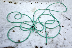 Loopin' Hose (Spike's Shoes) Tags: garden hose design snow winter loops found abstract pattern green white horizontal outdoor outside daytime daylight stpaul minnesota usa c5649094 forgotten swirly loopy minimalist art