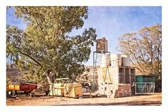 Behind The Hotel... (Daniela 59) Tags: hotel backyard kamieskroon northerncape southafrica junk reservoir tree eucalyptustree textures workingwithtextures sliderssunday hss 7dwf anythinggoesmondays danielaruppel